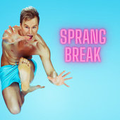 Sprang Break de Various Artists