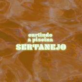 Curtindo a Piscina Sertanejo de Various Artists