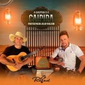 O Doutor e o Caipira (feat. Julio Violeiro) von Zé Rafael