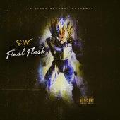 Final Flash de S.W.