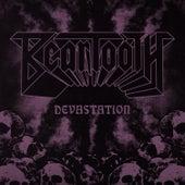 Devastation von Beartooth