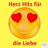 Herz Hits für die Liebe de Various Artists