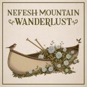 Wanderlust (feat. Jerry Douglas & Bryan Sutton) by Nefesh Mountain