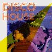 Disco House von Andy Lee