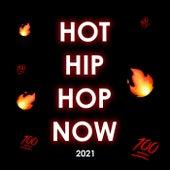 Hot Hip Hop Now de Various Artists