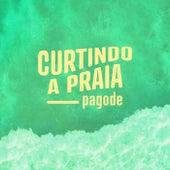 Curtindo a Praia Pagode de Various Artists