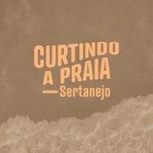 Curtindo a Praia Sertanejo de Various Artists