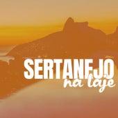 Sertanejo na Laje von Various Artists