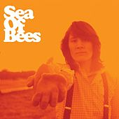 Orangefarben by Sea of Bees