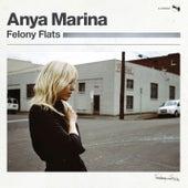 Felony Flats de Anya Marina