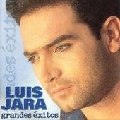 Amame de Luis Jara
