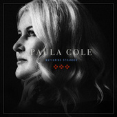 Wayfaring Stranger by Paula Cole