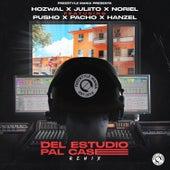 Del Estudio Pal Case (Remix) von Hozwal