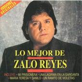Una Lágrima En La Garganta de Zalo Reyes
