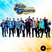 Vol. 4 by Julio Castro y Su Orquesta Pongale sabor