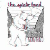 Mountains/Brown Boxes de The Spinto Band