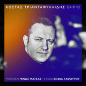 Kostas Triadafillidis: