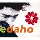 Live Ed de Etienne Daho