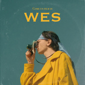 come un film di wes by Nube