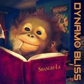 Shangri-La by Dynamo Bliss