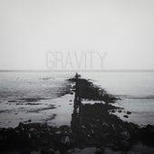 Gravity by The Dimidium Affair