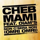 Non C'sera Non by Cheb Mami