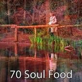 70 Soul Food de Japanese Relaxation and Meditation (1)