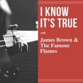 I Know It's True von James Brown
