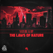 The Laws of Nature by BP