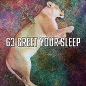 63 Greet Your Sle - EP de White Noise Babies