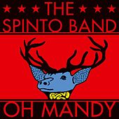 Oh Mandy de The Spinto Band