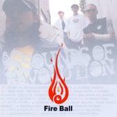 Sounds Of Revolution de Fire Ball