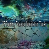 75 Calming Peaceful Meditation Tracks de Meditación Música Ambiente