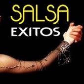 Salsa Exitos by Adalberto Santiago, Andy Montañez, Angel canales, Cheo Feliciano, Orquesta Adolescentes
