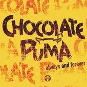 Always And Forever de Chocolate Puma