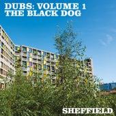Dubs, Vol. 1 de The Black Dog