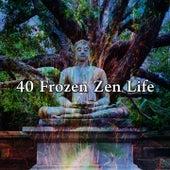 40 Frozen Zen Life by Lullabies for Deep Meditation