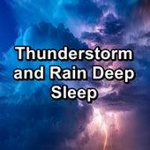 Thunderstorm and Rain Deep Sleep by Sleep Songs 101