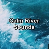 Calm River Sounds van Beach Sounds