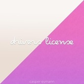 Drivers License by Casper Esmann
