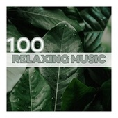 100 Relaxing Music by Various Artists