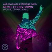 Never Going Down (Richard Durand Remix) von Andrew Rayel