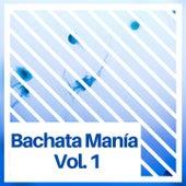 Bachata Manía, Vol. 1 de Luis Miguel Del Amargue, Eladio Romero Santos, Kiko Rodriguez, Leonardo Paniagua, Teodoro Reyes