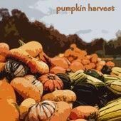 Pumpkin Harvest by Peggy Lee