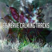 68 Nerve Calming Tracks by Classical Study Music (1)