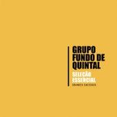 Seleção Essencial - Grandes Sucessos - Grupo Fundo de Quintal von Grupo Fundo de Quintal