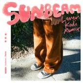 Sunbeam (Leven Kali Remix) van Kian