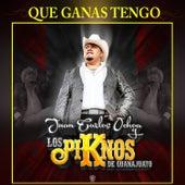 Que Ganas Tengo de Juan Carlos Ochoa y Los PiKnos De Guanajuato