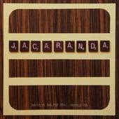 Jacarandá by Matheus Walter