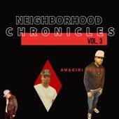 Neighborhood Chronicles Vol. 3 de Amagiri Young